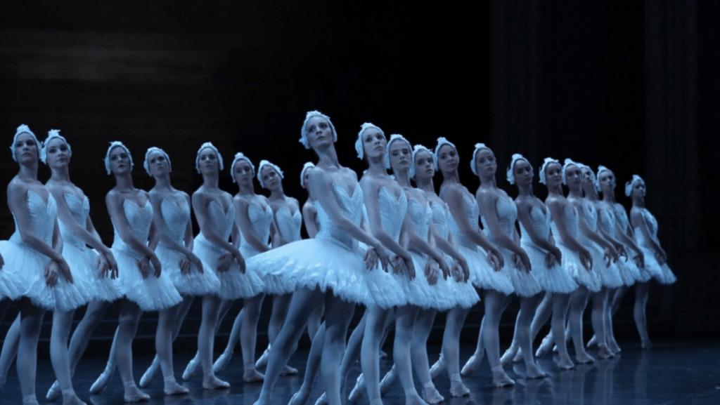 opera,event online, thiên nga đen